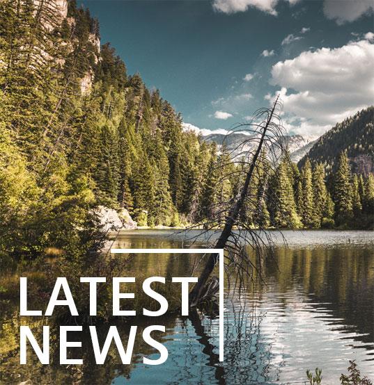 cm_latestnews